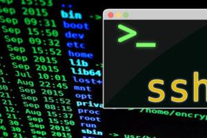 ssh(コマンド)でファイルを消す方法(root権限)